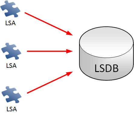 lsa into lsdb