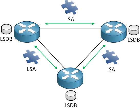 Routers LSDB LSA