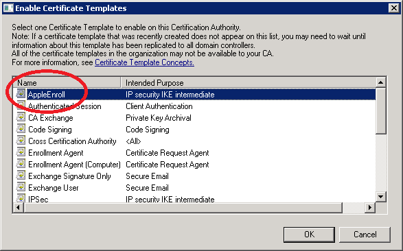 Eap tls with server 2008 scep for apple devices networklessons windows server 2008 ca enable certificate template yelopaper Images