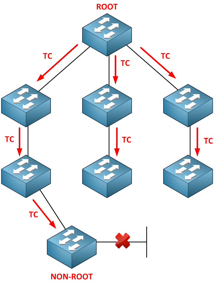 Spanning Tree TC to Root