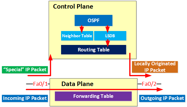 Data plane forwarding packets
