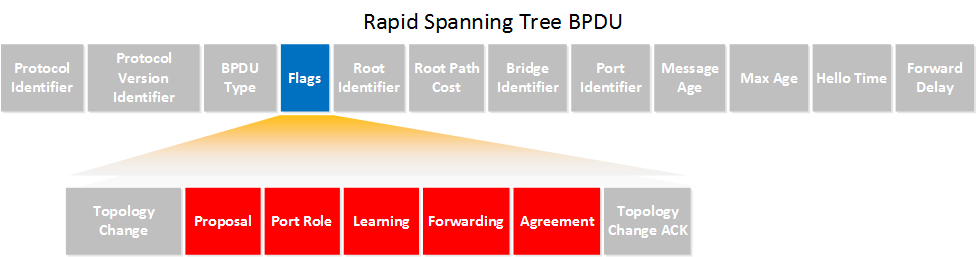 Rapid Spanning-Tree BPDU Header