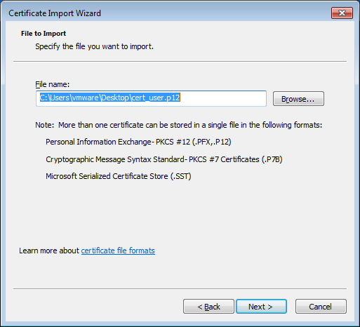 Cisco ASA certificate import wizard file name