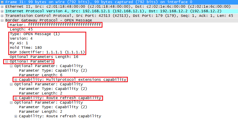 Wireshark Capture BGP Open Message