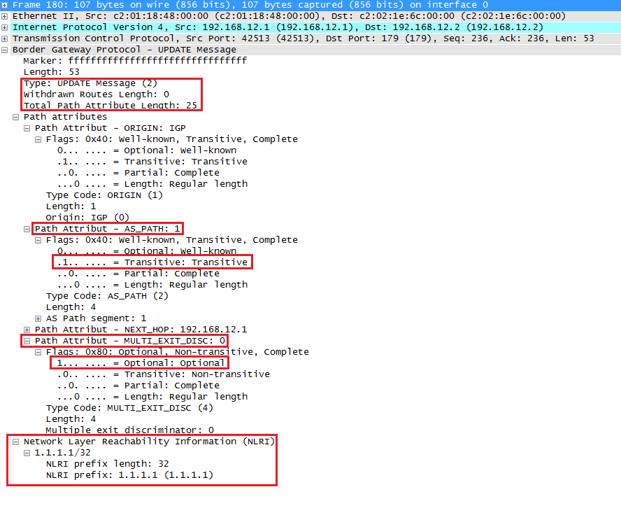 Wireshark Capture BGP Update Route Message