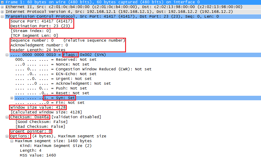 Wireshark Capture TCP Fields