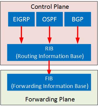 control plane rib forwarding plane fib