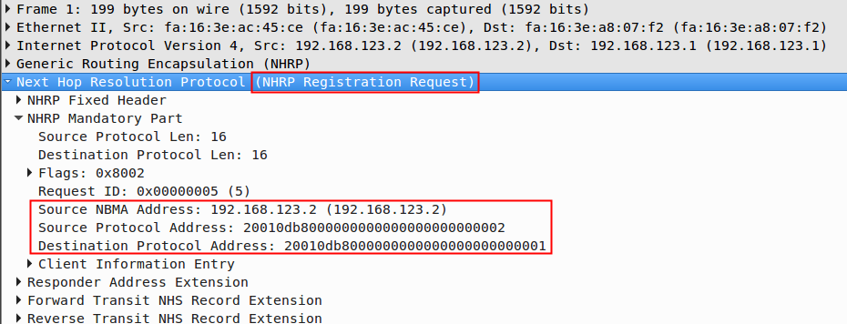 DMVPN NHRP IPv6 Registration Request