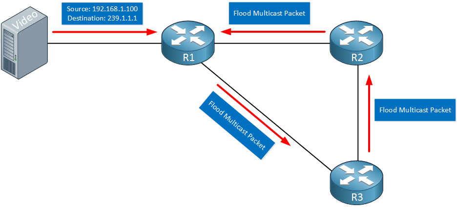 Multicast Dense Mode Loop