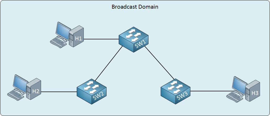 switch single broadcast domain