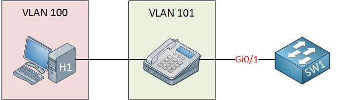 switch host ip phone voice vlan