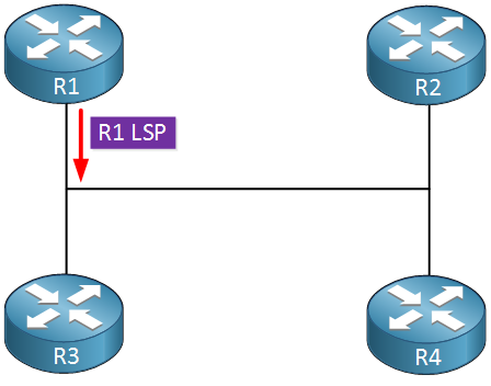 is-is r1 sending lsp on lan