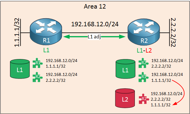 is-is routers area 12 level 1-2 adjacency