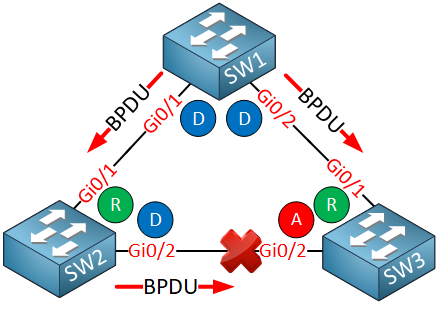 three switches sending bpdus stp port states